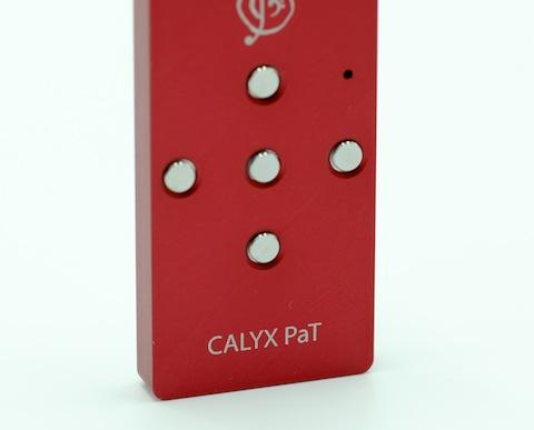 Calyx PaT_3